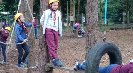 Cubs Adventure Day at Broadstone Warren